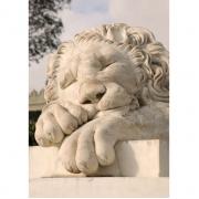 Slapende leeuw van marmer